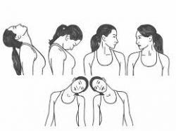 rekoefening voor de nek